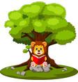 cartoon lion reading book vector image