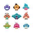 Colourful Cute Birds Set vector image