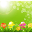 Green Border With Grass And Color Eggs vector image