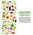 vegetables set logo label cartoon style vector image