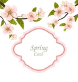 Spring Elegant Card with Blossoming Tree Branches vector image