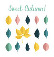 set with autumn leaves isolated on white vector image