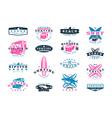 Set of surfing emblem Graphic design for t shirt vector image