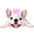 Royalty bulldog vector image