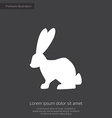 rabbit premium icon white on dark background vector image
