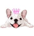 Royalty bulldog vector image