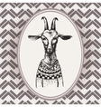 Vintage Hand Drawn Portrait goat vector image vector image