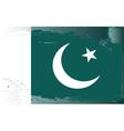 Pakistan national flag vector image vector image