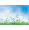 summer flowers blue vector image