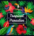 flat tropical frame vector image