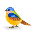 Small bird titmouse cute songbird vector image