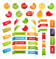 Labels And Web Ribbons Set vector image