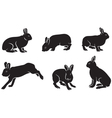 silhouettes of the hare vector image
