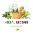 Medicinal Herbs In Mortar vector image