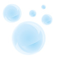 Bubbles on a white background vector image