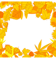 Autumnal seasonal frame vector image vector image