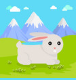 Funny hare vector image