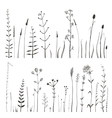 Sketchy Wild Field Flowers and Grass on White vector image