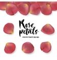 Realistic pink rose petals set vector image