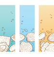 Seashell banner set vector image