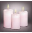 three pink candles vector image