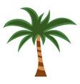 palm flat icon cartoon vector image