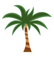 palm flat icon cartoon vector image