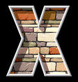 stone letter X vector image vector image