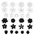 jasmine flower icon set on white background vector image
