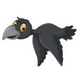 cartoon crow flying vector image