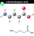 gamma Aminobutyric acid synaptic neurotransmitter vector image