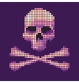 Skull and crossbones collected from pixels on vector image