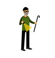 professional masked burglar character with a vector image