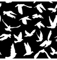 Doves and pigeons seamless pattern black and white vector image
