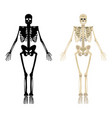 skeleton icon human skeleton front side vector image