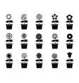 pot flower plants icon set vector image