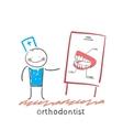 orthodontist tells presentation about teeth vector image