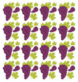 grape seamless pattern design vector image