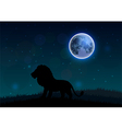 Silhouette of a lion standing on a hill at night vector image