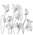 Monochrome Sweet pea flowers vector image