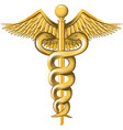 Caduceus on the white background vector image