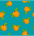 seamless pattern apricot on azure background vector image