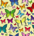 Colorful butterflies seamless background vector image vector image