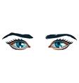 Women Eyes vector image