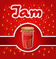 strawberry jam vector image