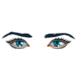 Women Eyes vector image