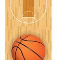 Basketball Court and Ball vector image