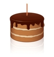 chocolate cake vector image vector image