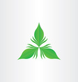 green leaf abstract symbol vector image