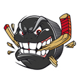 Cartoon hockey puck vector image